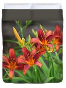 New Daylilies Duvet Cover