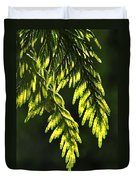 New Growth 25859 Duvet Cover