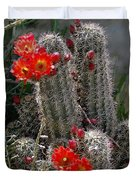 New Mexico Cactus Duvet Cover