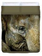 Elephant Face Duvet Cover