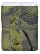 New Photographic Art Print For Sale Orchids 11 Duvet Cover