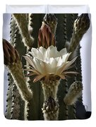 New Photographic Art Print For Sale White Cactus Flower Duvet Cover