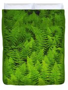 New York Ferns Duvet Cover