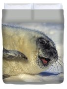 Newborn Gray Seal Pup Halichoerus Duvet Cover