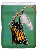 Newly-emerged Monarch Butterfly Duvet Cover