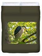 Night Heron At Rest Duvet Cover