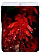 Night Of Glistening Red Salvia Duvet Cover
