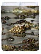 Nile Crocodiles Crocodylus Niloticus Duvet Cover