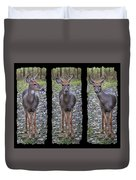 Curious Yearling Deer Duvet Cover