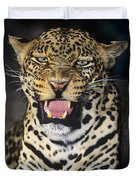 No Solicitors African Leopard Endangered Species Wildlife Rescue Duvet Cover