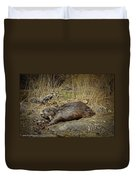 North American Beaver Duvet Cover