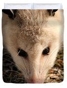 North American Opossum In Winter Duvet Cover