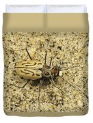 Northern Beach Tiger Beetle Marthas Duvet Cover