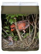 Northern Cardinal At Nest Duvet Cover