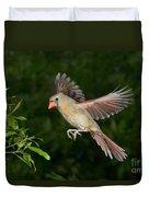 Northern Cardinal Hen Duvet Cover