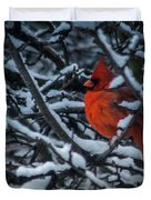 Northern Cardinal In Winter Duvet Cover