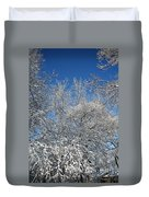 Northern Colors Duvet Cover