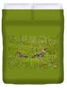 Northern Flicker Pictures 42 Duvet Cover