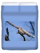 Northern Flicker Pictures 5 Duvet Cover