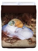 Northern Moon Snail Duvet Cover