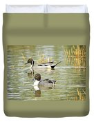 Northern Pintail Ducks  Duvet Cover