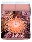 Northern Red Anemone Duvet Cover
