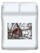 Northern Red Cardinal In Winter Duvet Cover