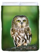Northern Saw-whet Owl Aegolius Acadicus Wildlife Rescue Duvet Cover