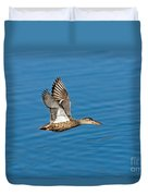 Northern Shoveler In Flight Duvet Cover