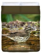 Northern Waterthrush Duvet Cover