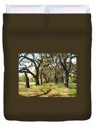 Oak Allee At Roseland Plantation  Duvet Cover