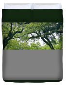 Oak Alley Trees Duvet Cover