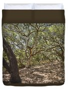 Oak Forest - The Magical And Mysterious Trees Of The Los Osos Oak Reserve Duvet Cover