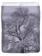 Oak In Snow Duvet Cover by Don Perino