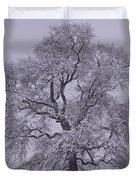 Oak In Snow Duvet Cover