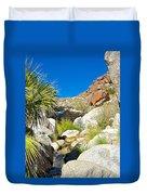Oasis On Borrego Palm Canyon Trail In Anza-borrego Desert Sp-ca Duvet Cover