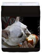 Oat Meal The French Bull Dog Duvet Cover