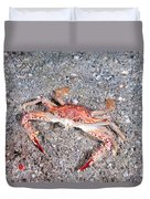 Ocellate Swimming Crab Duvet Cover