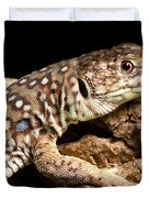 Ocellated Lizard Timon Lepidus Duvet Cover