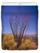 Ocotillo And Palo Verde Duvet Cover