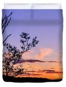 Ocotillo Sunset Duvet Cover