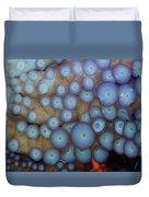 Octo Circles Duvet Cover