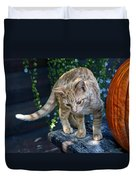 October Kitten #2 Duvet Cover
