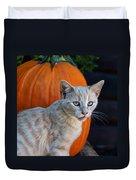 October Kitten #3 Duvet Cover