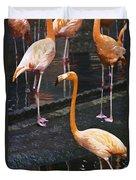 Oil Painting - Focus On A Single Flamingo Inside The Jurong Bird Park Duvet Cover