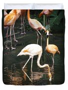 Oil Painting - The Head Of A Flamingo Under Water In The Jurong Bird Park In Singapore Duvet Cover
