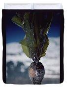 Oiled Kelp From Exxon Valdez Spill Duvet Cover