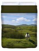 Okehampton Sheep  Duvet Cover