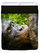 Old Chimp Duvet Cover