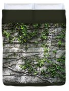 Old Coquina Wall Duvet Cover